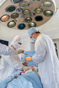 transplantation-surgery
